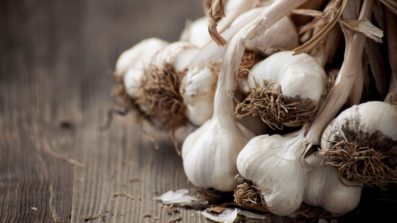 How Do You Keep Garlic From Drying Out