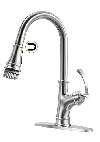 Appaso Kitchen Faucet with Pull Down Sprayer and Magnetic Docking Sprav Head