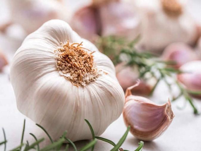 Best Garlic from the Market