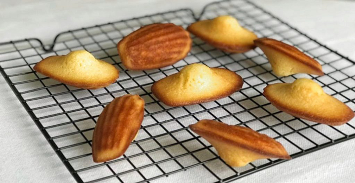 Can You Make Madeleines without the Sea-Shell Mold
